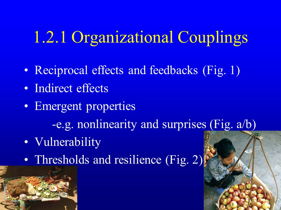 2.1 What are natural resource conflicts.