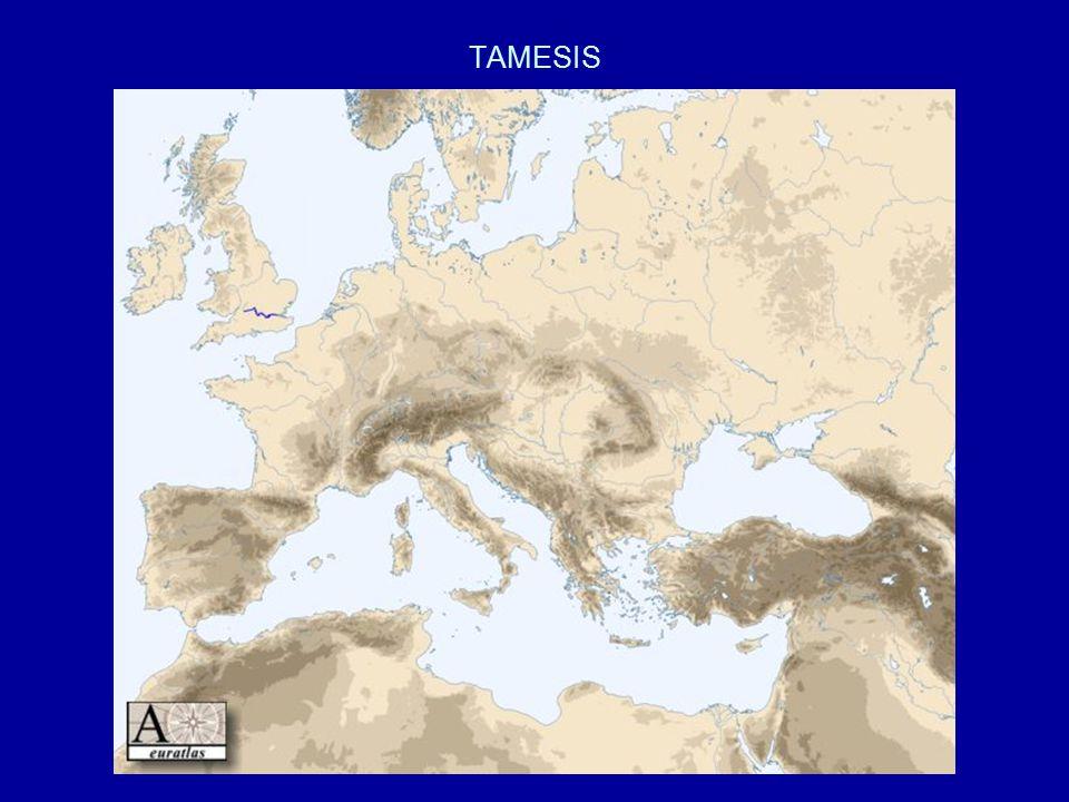 TAMESIS