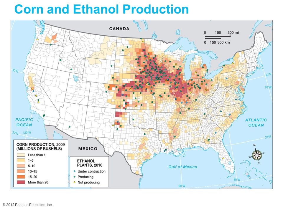 © 2013 Pearson Education, Inc. Corn and Ethanol Production