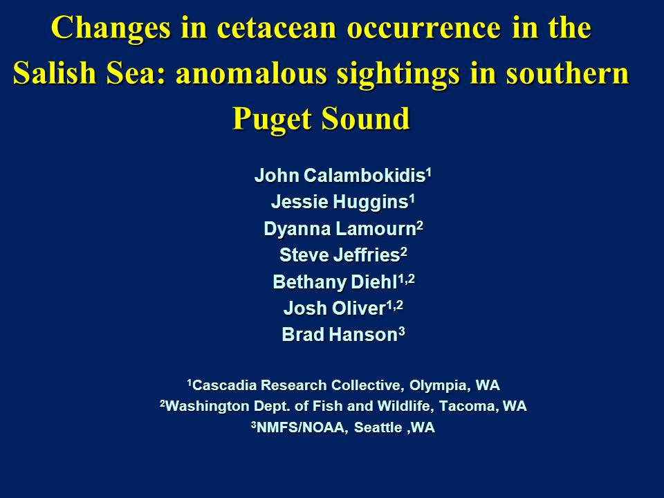 Changes in cetacean occurrence in the Salish Sea: anomalous sightings in southern Puget Sound John Calambokidis 1 Jessie Huggins 1 Dyanna Lamourn 2 Steve Jeffries 2 Bethany Diehl 1,2 Josh Oliver 1,2 Brad Hanson 3 1 Cascadia Research Collective, Olympia, WA 2 Washington Dept.