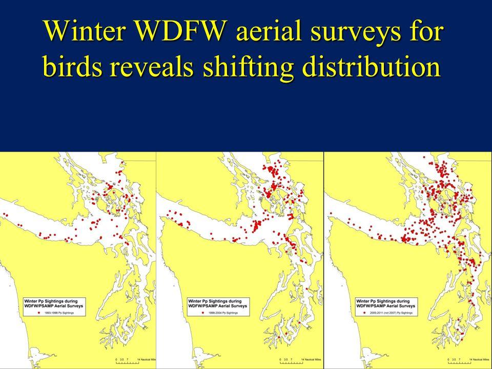 Winter WDFW aerial surveys for birds reveals shifting distribution
