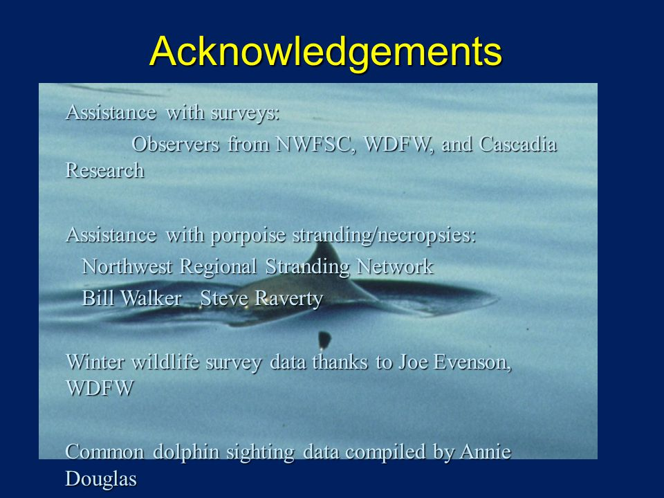 Acknowledgements Assistance with surveys: Observers from NWFSC, WDFW, and Cascadia Research Observers from NWFSC, WDFW, and Cascadia Research Assistance with porpoise stranding/necropsies: Northwest Regional Stranding Network Northwest Regional Stranding Network Bill Walker Steve Raverty Bill Walker Steve Raverty Winter wildlife survey data thanks to Joe Evenson, WDFW Common dolphin sighting data compiled by Annie Douglas