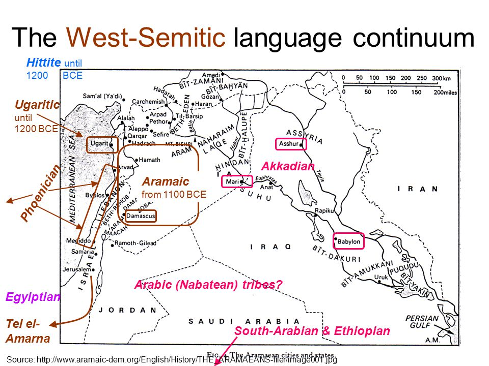The West-Semitic language continuum Egyiptian Ugaritic until 1200 BCE Akkadian Aramaic from 1100 BCE Phoenician Arabic (Nabatean) tribes.