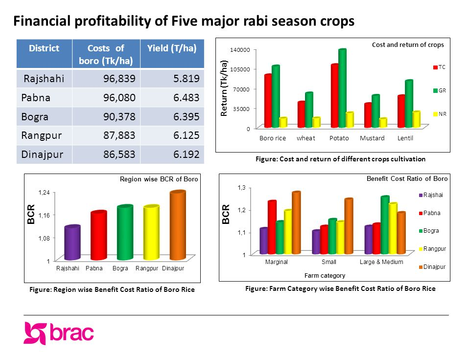 Financial profitability of Five major rabi season crops Figure: Cost and return of different crops cultivation Figure: Farm Category wise Benefit Cost Ratio of Boro Rice Figure: Region wise Benefit Cost Ratio of Boro Rice DistrictCosts of boro (Tk/ha) Yield (T/ha) Rajshahi96,8395.819 Pabna96,0806.483 Bogra90,3786.395 Rangpur87,8836.125 Dinajpur86,5836.192