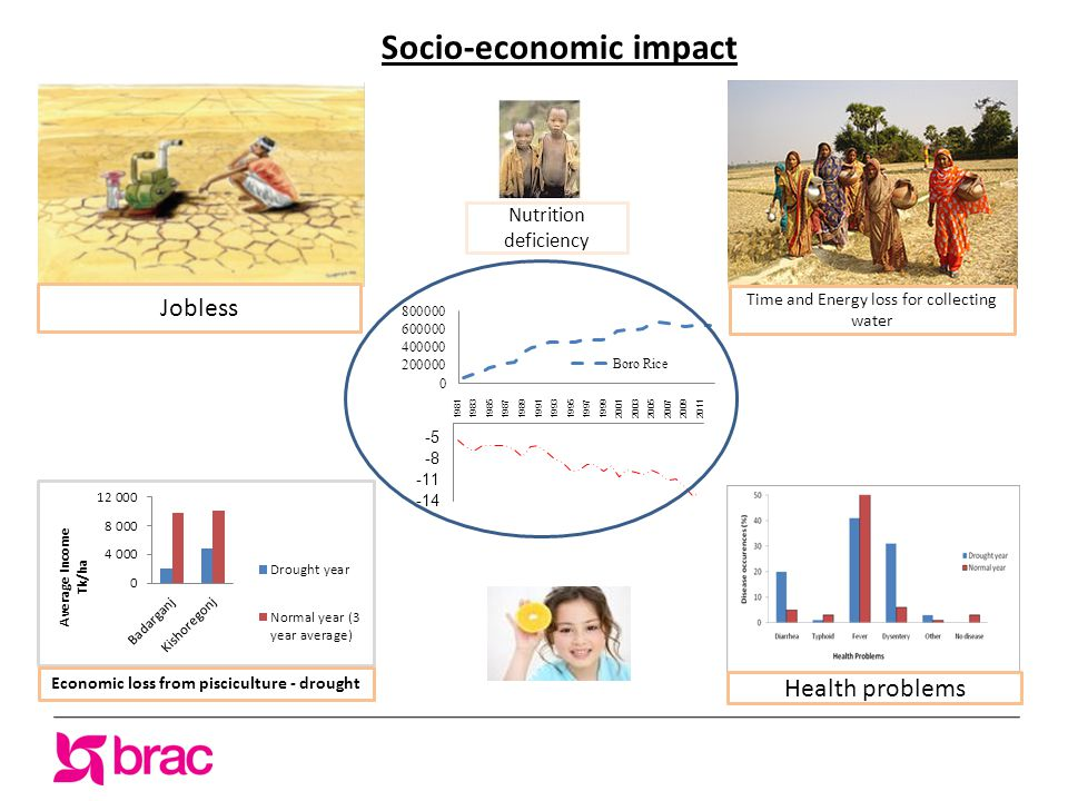 Socio-economic impact Jobless Time and Energy loss for collecting water Health problems Economic loss from pisciculture - drought Nutrition deficiency