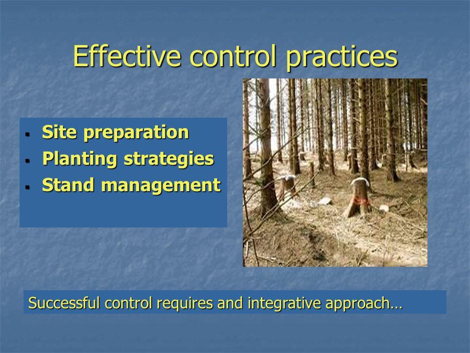 Site preparation  Site quality (climate, inoculum present) cool, moist, & shady = fungi.