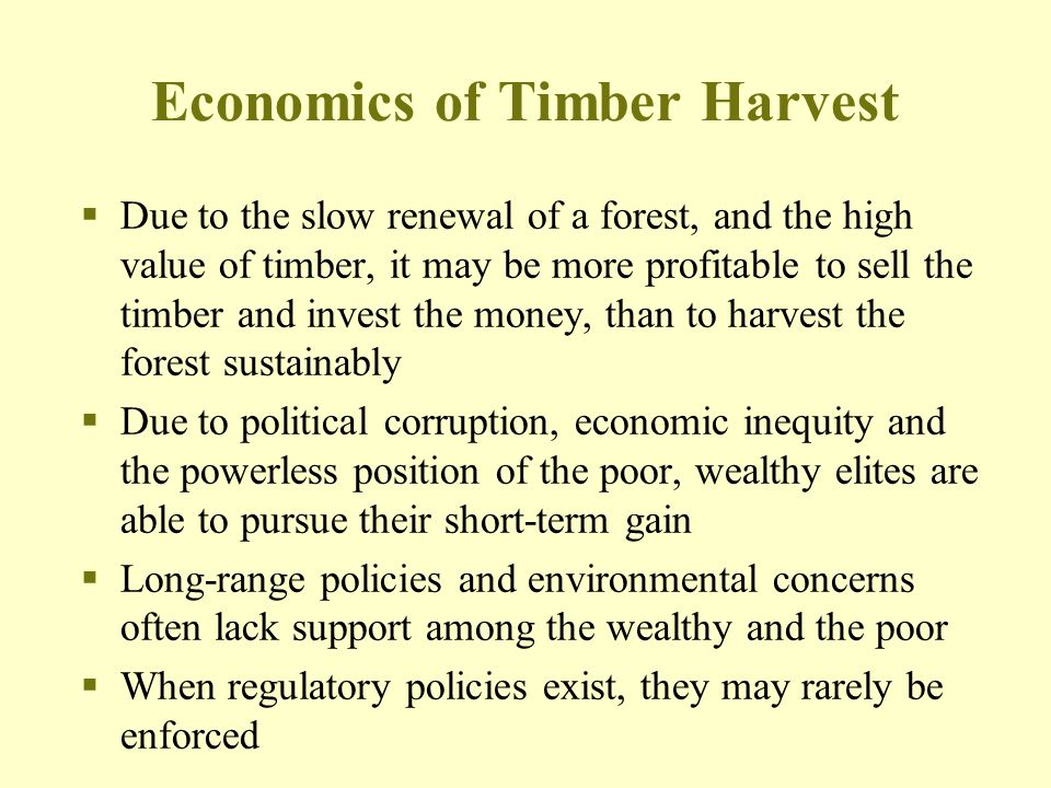 Economics of Timber Harvest  Due to the slow renewal of a forest, and the high value of timber, it may be more profitable to sell the timber and inve