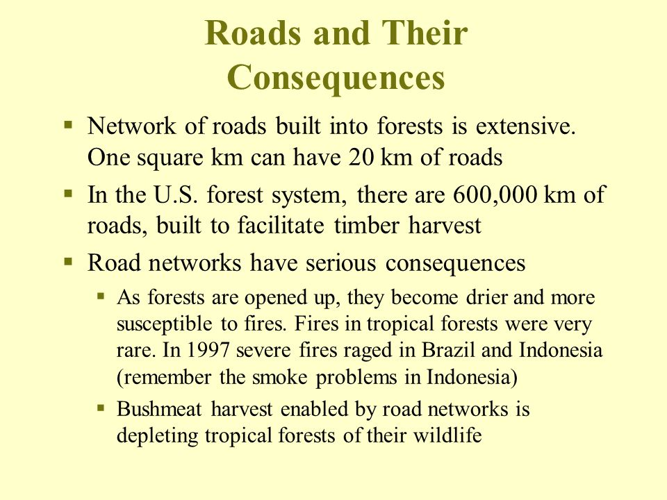 Roads and Their Consequences  Network of roads built into forests is extensive. One square km can have 20 km of roads  In the U.S. forest system, th