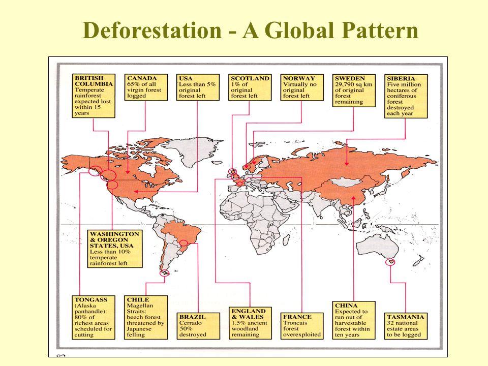 Deforestation - A Global Pattern