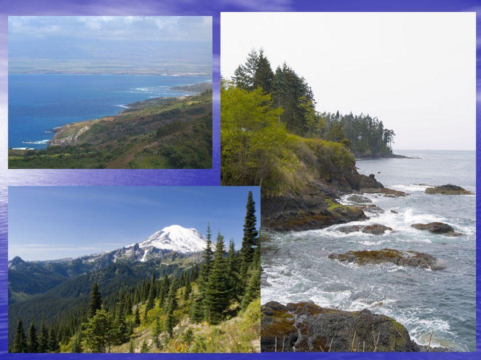 Rich Resources SS book pg 95 The Northwest Coast region had plentiful _______________________ resources.