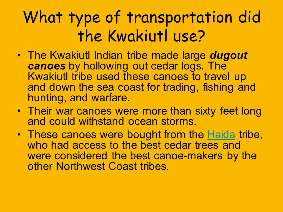 What type of transportation did the Kwakiutl use? The Kwakiutl Indian tribe made large dugout canoes by hollowing out cedar logs. The Kwakiutl tribe u