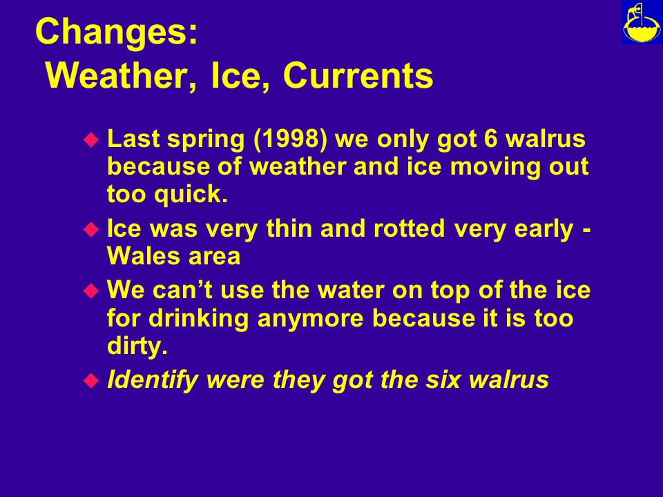 Changes: Weather, Ice, Currents u Last spring (1998) we only got 6 walrus because of weather and ice moving out too quick.