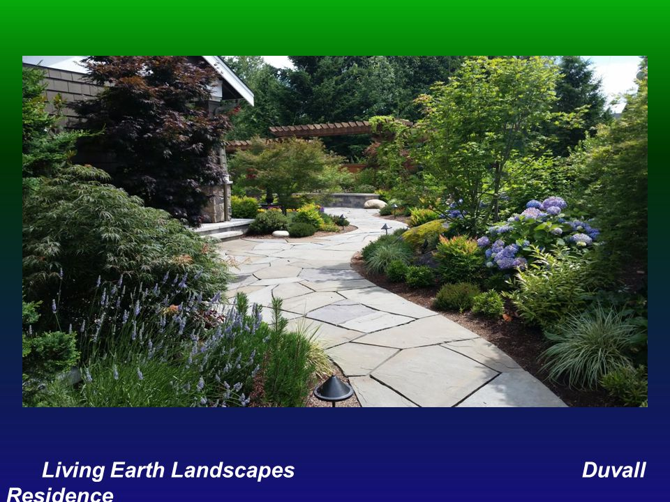 Living Earth Landscapes Duvall Residence