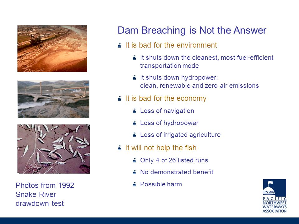 Dam Breaching is Not the Answer It is bad for the environment It shuts down the cleanest, most fuel-efficient transportation mode It shuts down hydropower: clean, renewable and zero air emissions It is bad for the economy Loss of navigation Loss of hydropower Loss of irrigated agriculture It will not help the fish Only 4 of 26 listed runs No demonstrated benefit Possible harm Photos from 1992 Snake River drawdown test