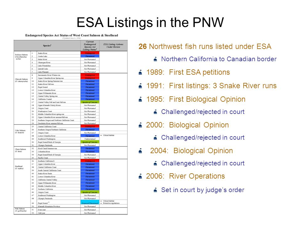 ESA Listings in the PNW 26 Northwest fish runs listed under ESA Northern California to Canadian border 1989: First ESA petitions 1991: First listings: 3 Snake River runs 1995: First Biological Opinion Challenged/rejected in court 2000: Biological Opinion Challenged/rejected in court 2004: Biological Opinion Challenged/rejected in court 2006: River Operations Set in court by judge's order