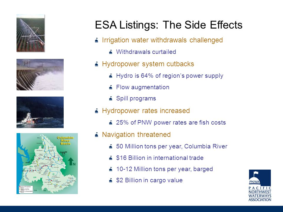 ESA Listings: The Side Effects Irrigation water withdrawals challenged Withdrawals curtailed Hydropower system cutbacks Hydro is 64% of region's power supply Flow augmentation Spill programs Hydropower rates increased 25% of PNW power rates are fish costs Navigation threatened 50 Million tons per year, Columbia River $16 Billion in international trade 10-12 Million tons per year, barged $2 Billion in cargo value