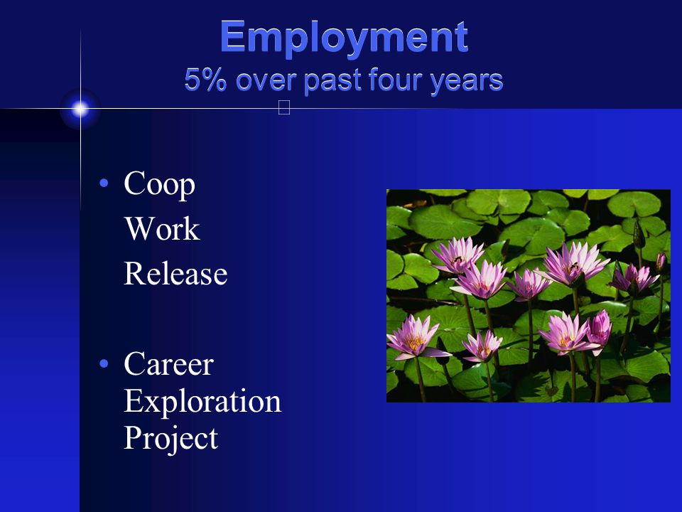 Employment 5% over past four years Coop Work Release Career Exploration Project