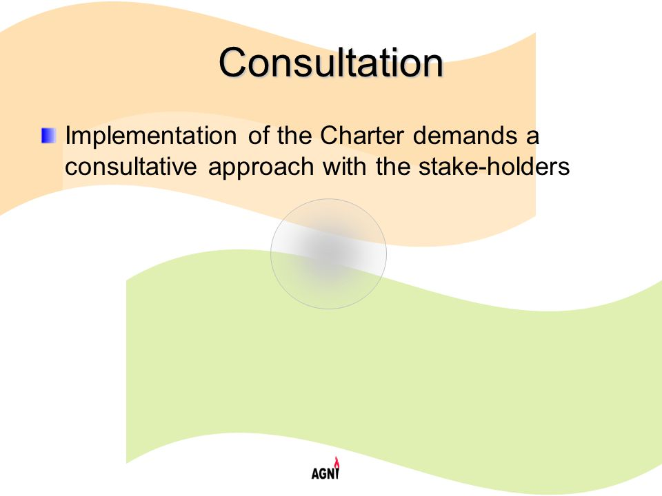 Consultation Implementation of the Charter demands a consultative approach with the stake-holders