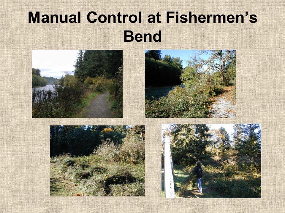 Manual Control at Fishermen's Bend