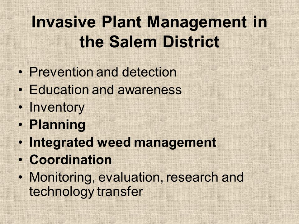 Invasive Plant Management in the Salem District Prevention and detection Education and awareness Inventory Planning Integrated weed management Coordination Monitoring, evaluation, research and technology transfer
