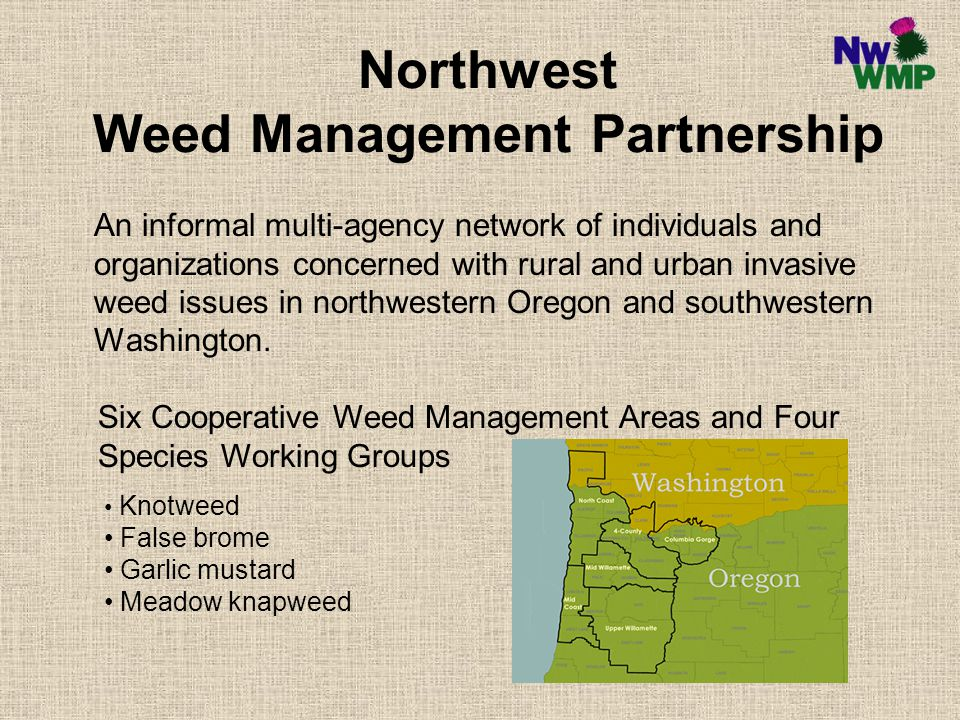 Northwest Weed Management Partnership An informal multi-agency network of individuals and organizations concerned with rural and urban invasive weed issues in northwestern Oregon and southwestern Washington.