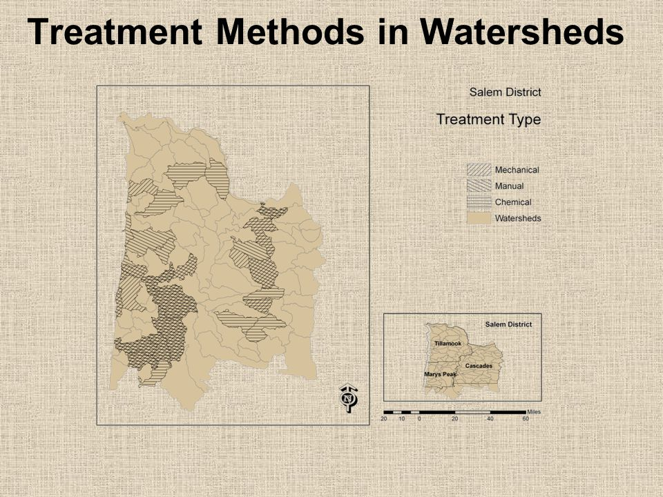 Treatment Methods in Watersheds