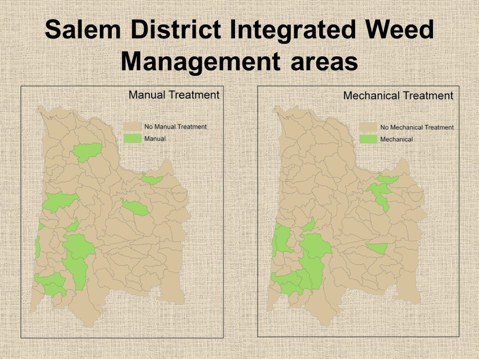 Salem District Integrated Weed Management areas