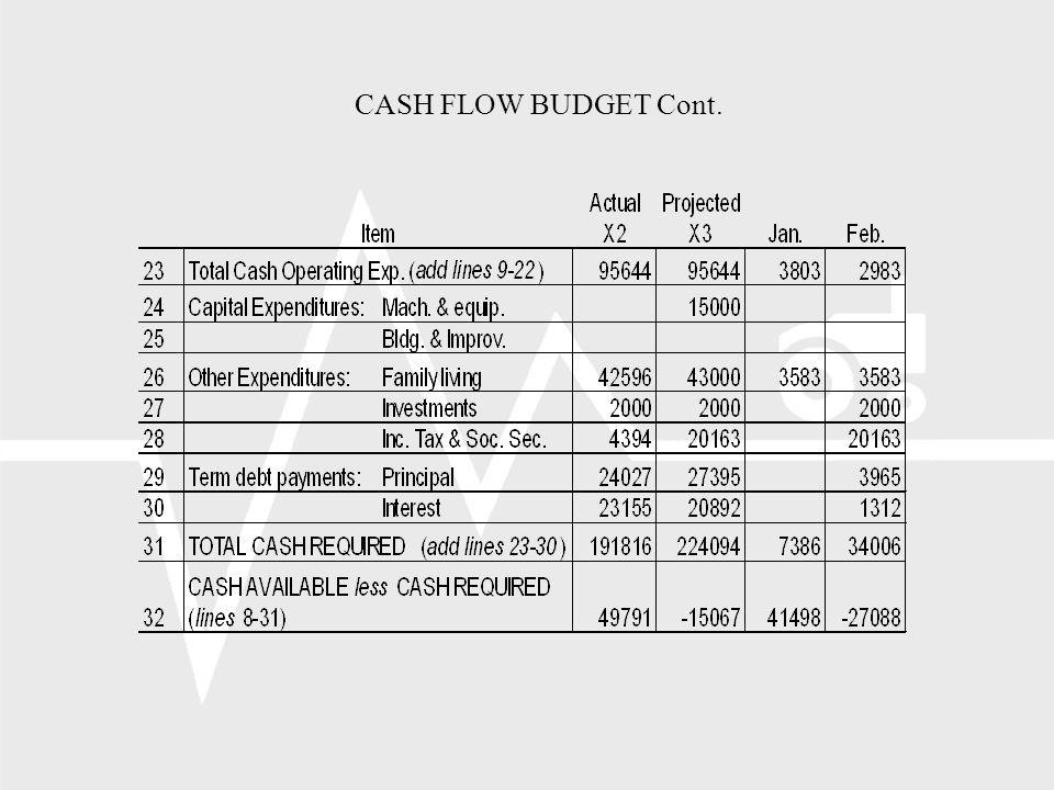 CASH FLOW BUDGET Cont.