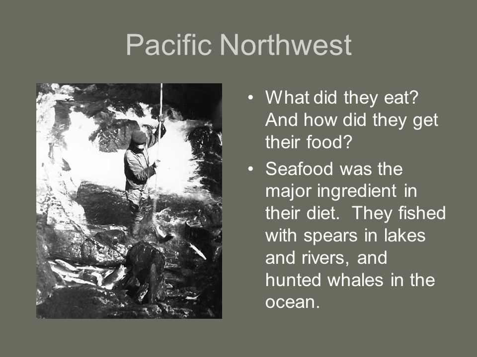 Pacific Northwest What did they eat. And how did they get their food.