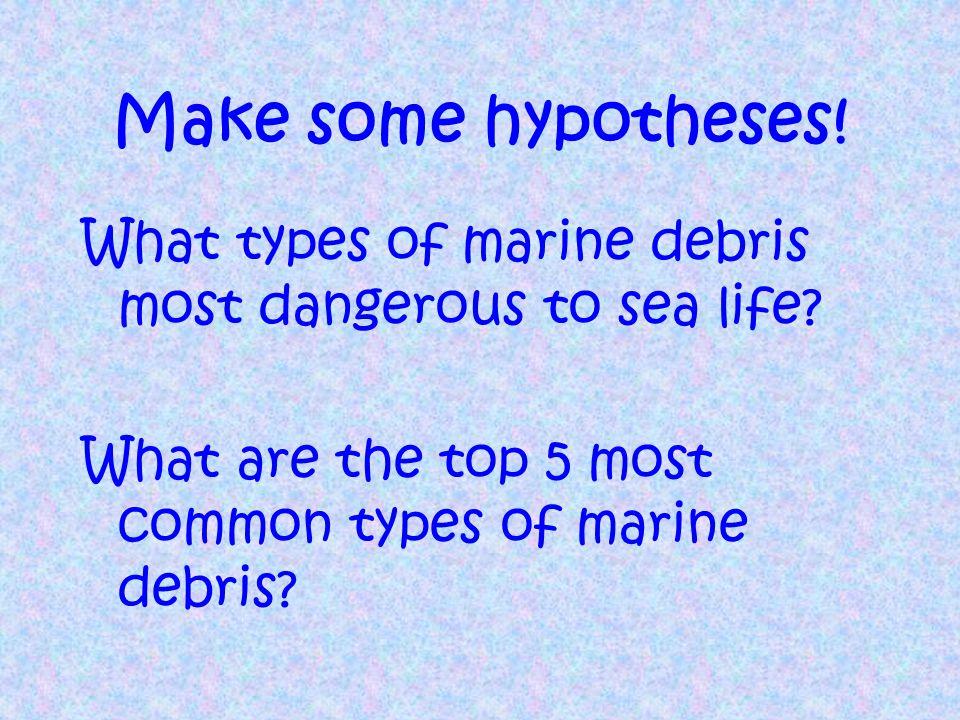 What is Marine Debris.