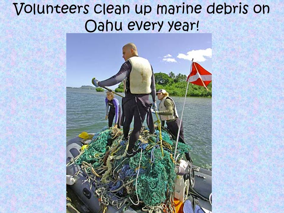 So what can YOU do about marine debris.
