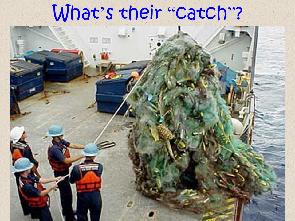 Make some hypotheses.What types of marine debris most dangerous to sea life.