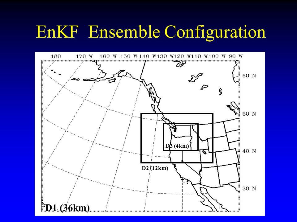 EnKF Ensemble Configuration D1 (36km) D2 (12km) D3 (4km)