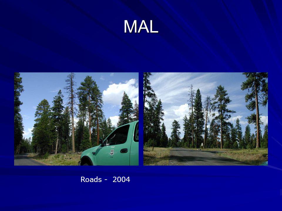 MAL Roads - 2004