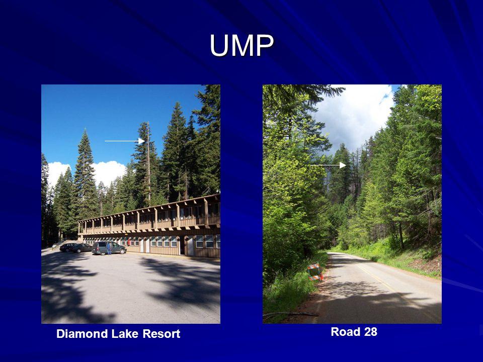 UMP Diamond Lake Resort Road 28