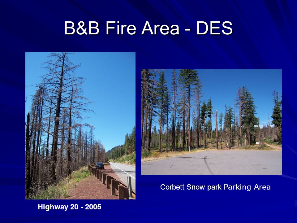 B&B Fire Area - DES Highway 20 - 2005 Corbett Snow park Parking Area