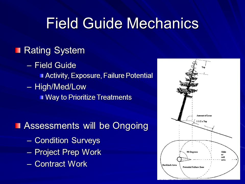 Field Guide Mechanics Rating System –Field Guide Activity, Exposure, Failure Potential –High/Med/Low Way to Prioritize Treatments Assessments will be