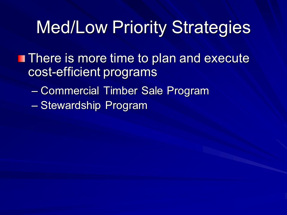 Med/Low Priority Strategies There is more time to plan and execute cost-efficient programs –Commercial Timber Sale Program –Stewardship Program