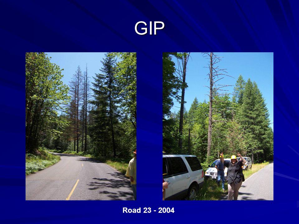 GIP Road 23 - 2004