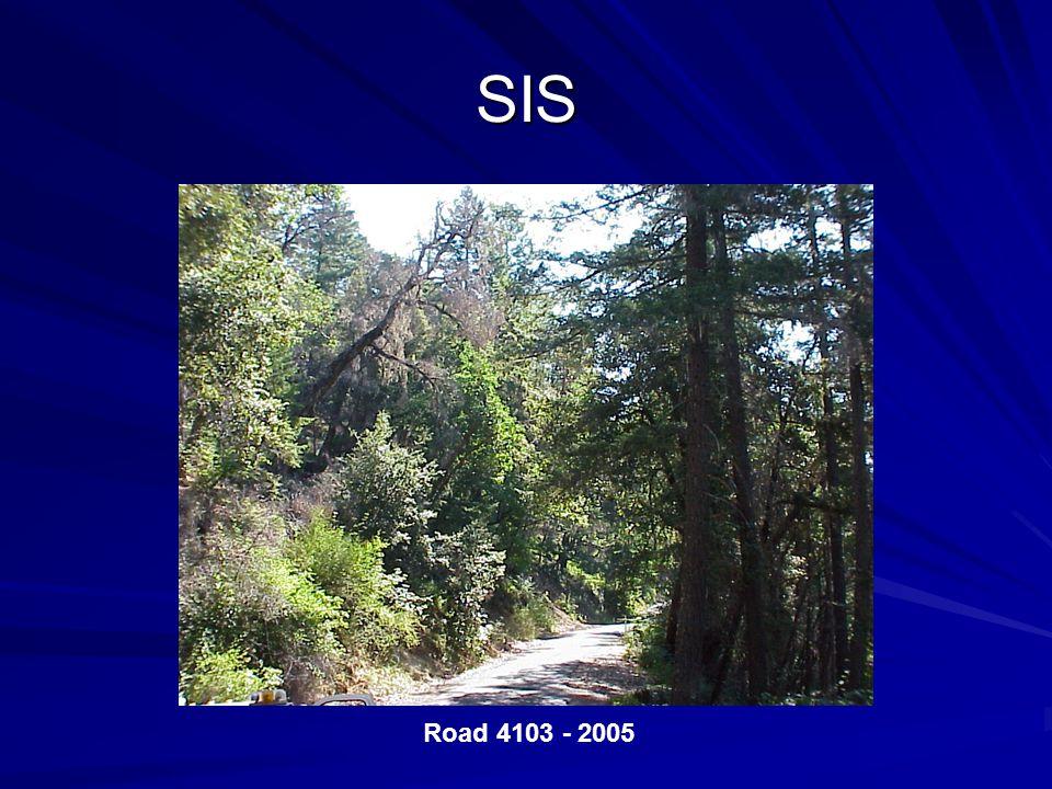SIS Road 4103 - 2005