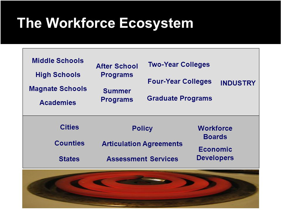 The Workforce Ecosystem Two-Year Colleges Four-Year Colleges Graduate Programs Summer Programs After School Programs Assessment Services Articulation Agreements Policy High Schools Middle Schools Magnate Schools Academies Cities Counties States Economic Developers Workforce Boards INDUSTRY