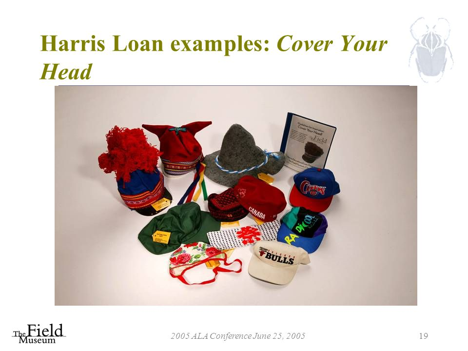 2005 ALA Conference June 25, 200519 Harris Loan examples: Cover Your Head