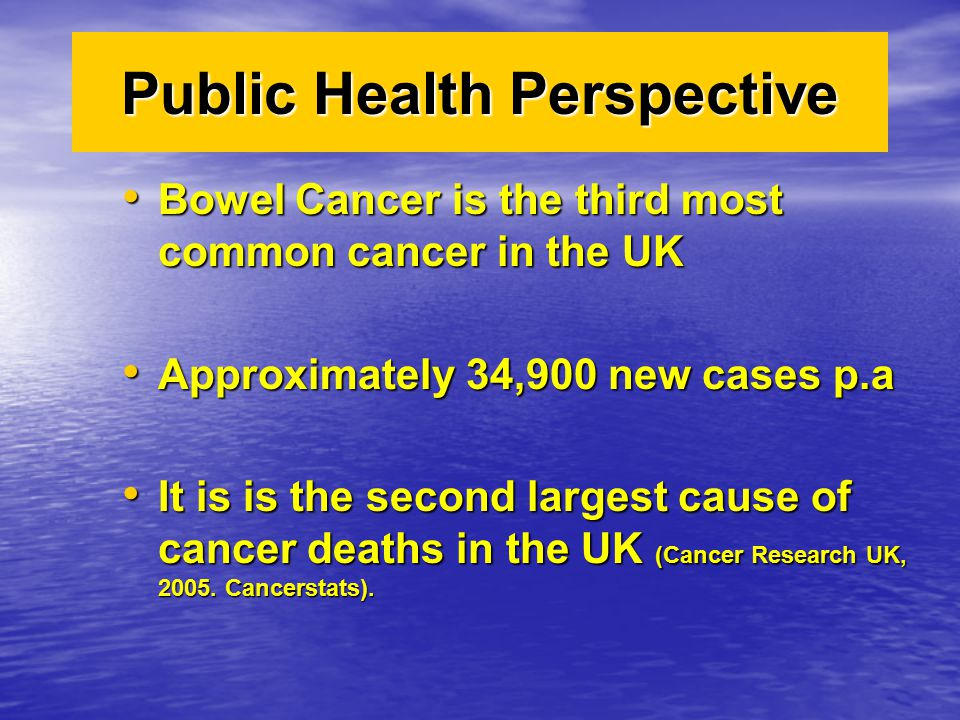 Public Health Perspective Bowel Cancer is the third most common cancer in the UK Bowel Cancer is the third most common cancer in the UK Approximately