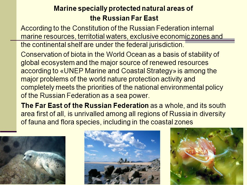 Marine specially protected natural areas of the Russian Far East According to the Constitution of the Russian Federation internal marine resources, territotial waters, exclusive economic zones and the continental shelf are under the federal jurisdiction.