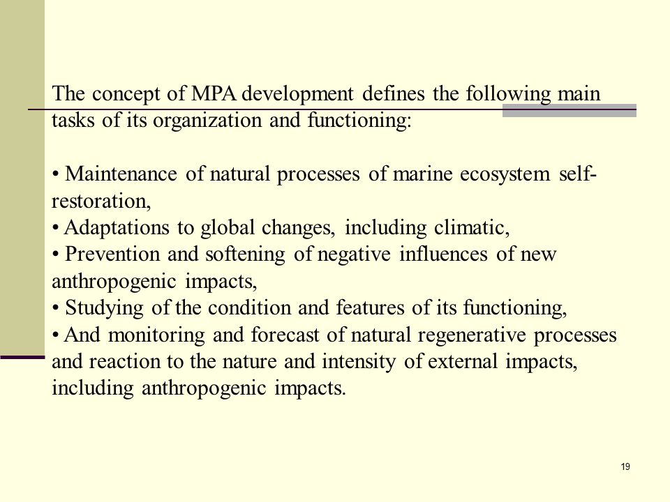 19 The concept of MPA development defines the following main tasks of its organization and functioning: Maintenance of natural processes of marine eco