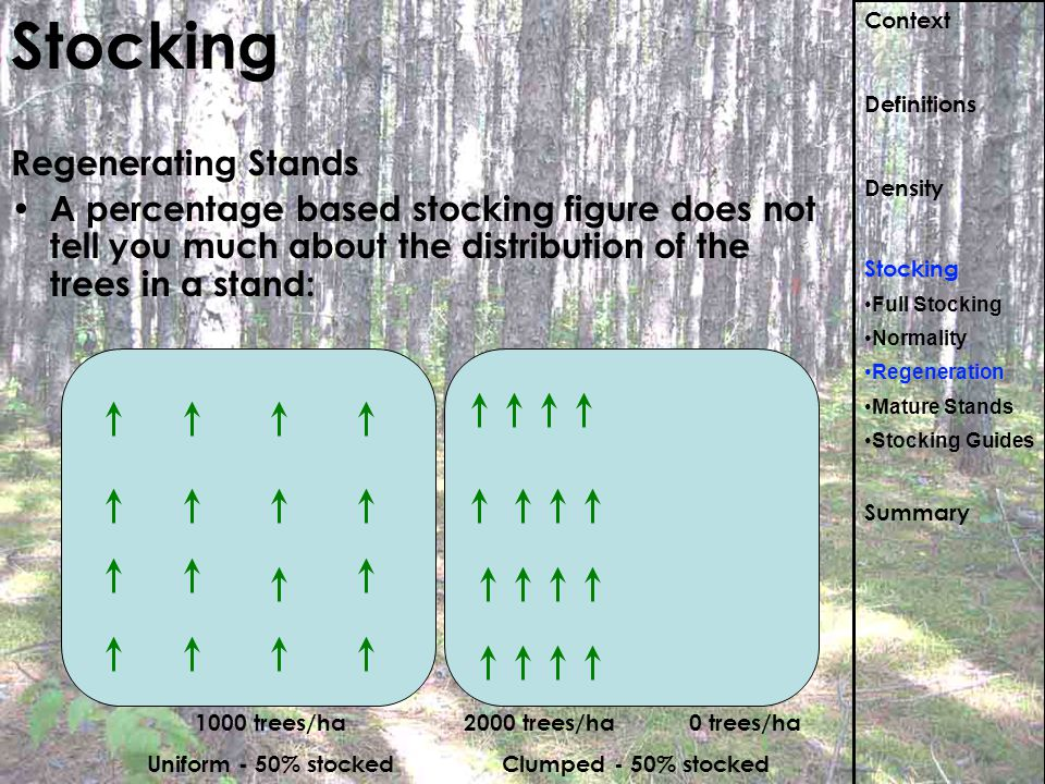 Stocking Regenerating Stands A percentage based stocking figure does not tell you much about the distribution of the trees in a stand: Context Definit