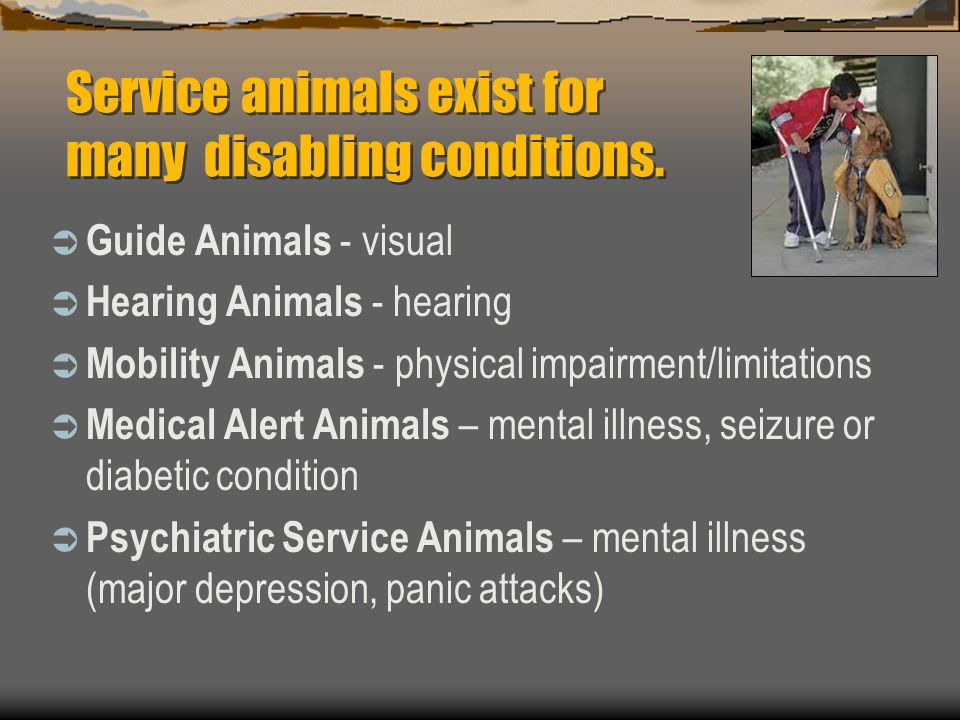 Service animals exist for many disabling conditions.  Guide Animals - visual  Hearing Animals - hearing  Mobility Animals - physical impairment/lim
