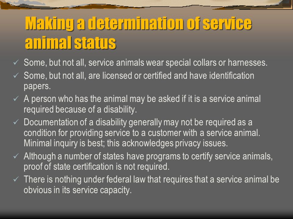 Making a determination of service animal status Some, but not all, service animals wear special collars or harnesses. Some, but not all, are licensed