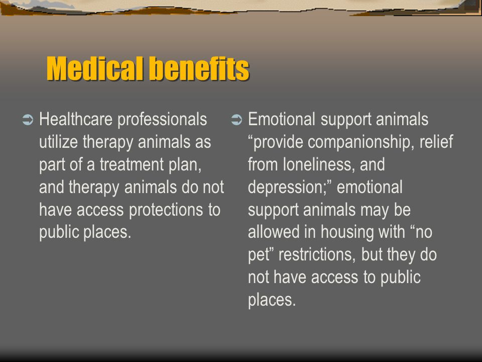 Medical benefits  Healthcare professionals utilize therapy animals as part of a treatment plan, and therapy animals do not have access protections to