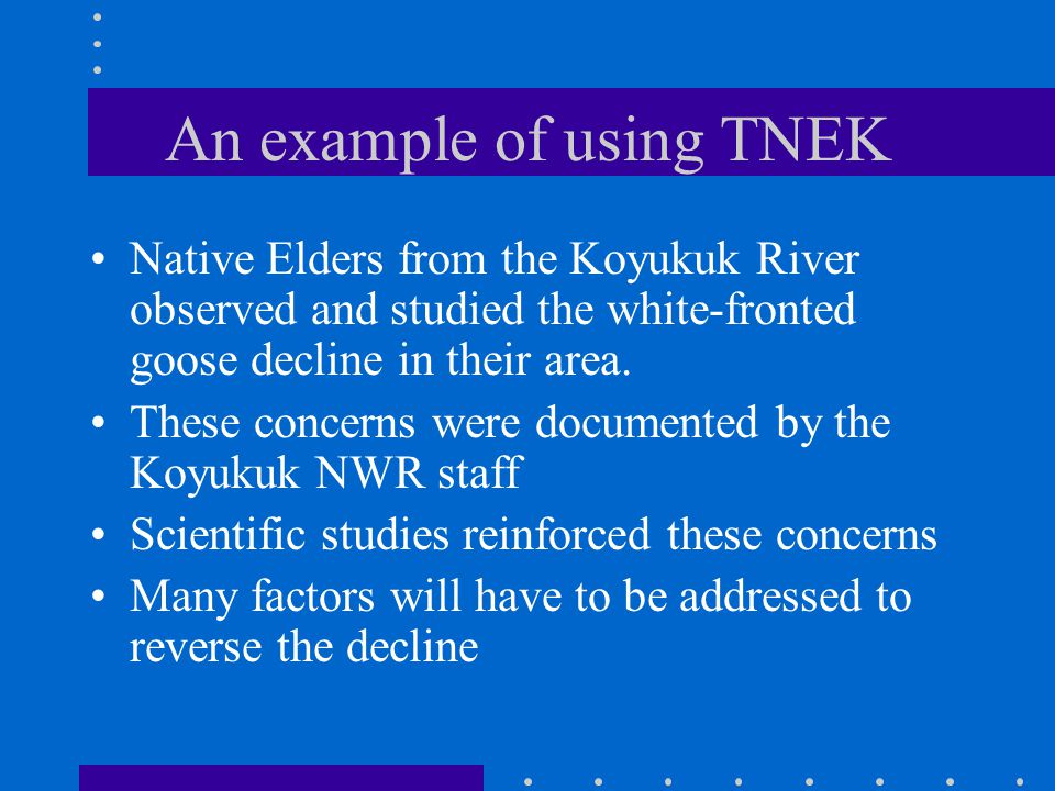 An example of using TNEK Native Elders from the Koyukuk River observed and studied the white-fronted goose decline in their area.